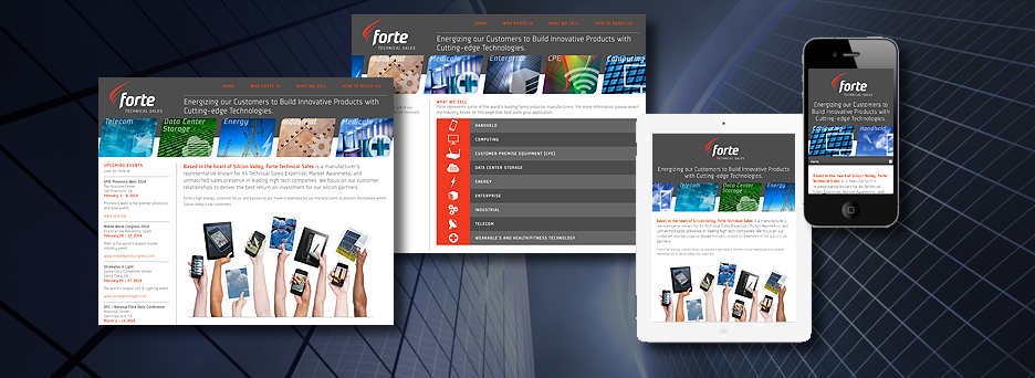 Forte Technical Sales Web Site