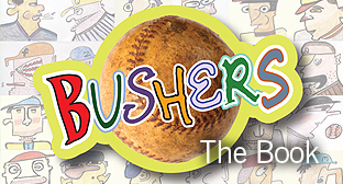 Bushers, the Book